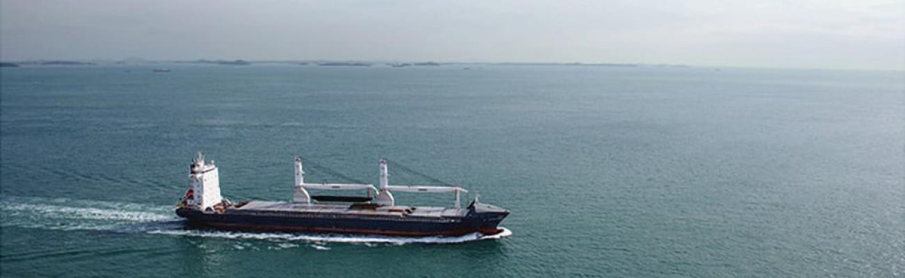 bulk_carrier_ship_viewed_from_distance_fs_md_e_2